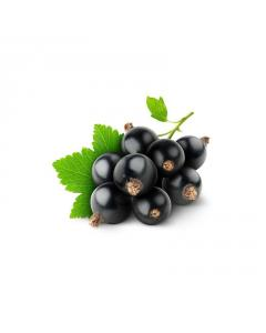 Ejuice Blackcurrant Flavour by Insano