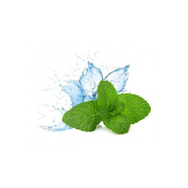 Super Mint E-juice (previously called Mint Flavour) image